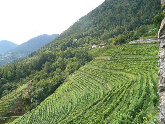 Чермес, Италия: Schloßeigene Nutzgärten