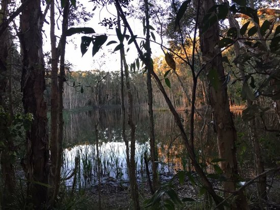 Arrawarra, Australien: photo2.jpg