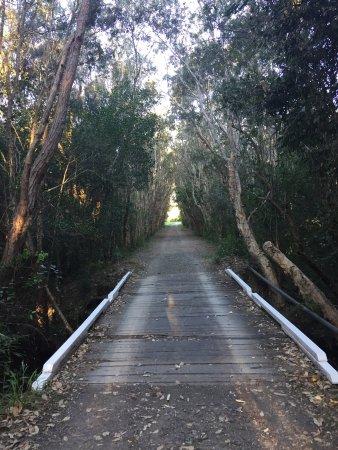Arrawarra, Australien: photo3.jpg