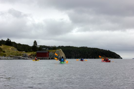 Stan Cook Sea Kayak Adventures Day Tours: Great views!