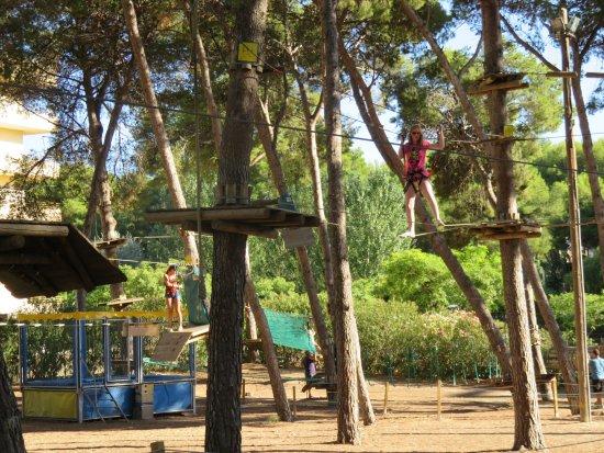 Bosc Aventura Salou: Red Course