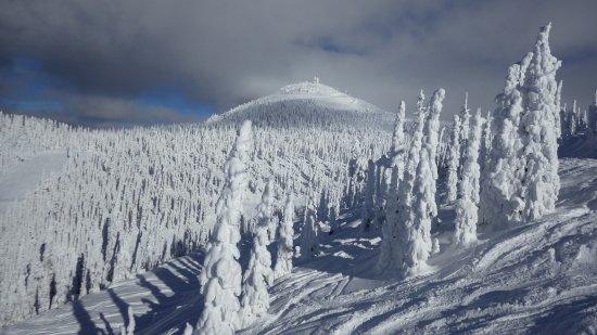 Montana Snowbowl : Snowghosts