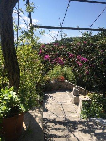 Villa Iveta: photo0.jpg