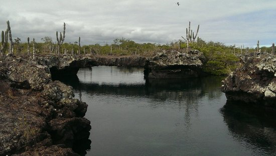Puerto Villamil, Ecuador: IMAG4659_large.jpg