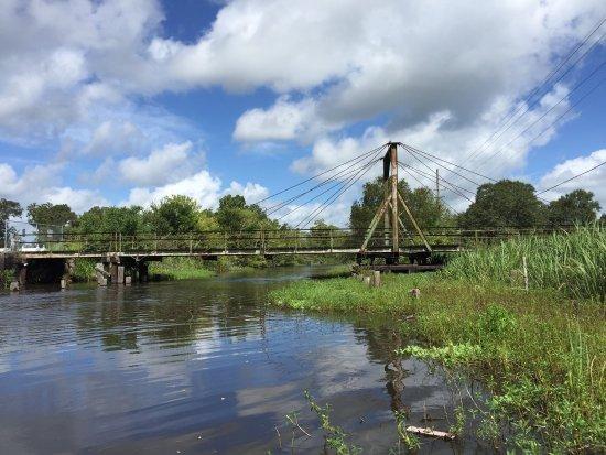 Houma, LA: Annie Miller's Son's Swamp and Marsh Tours