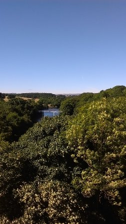 view from Barnard Castle