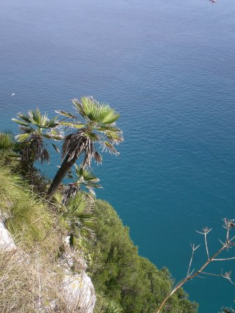 Mediterranean Steps: 5th
