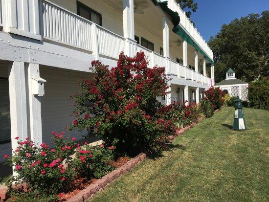 Dandridge, TN: Beutiful landscaping