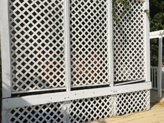 Dandridge, TN: Closed and blocked hot tub