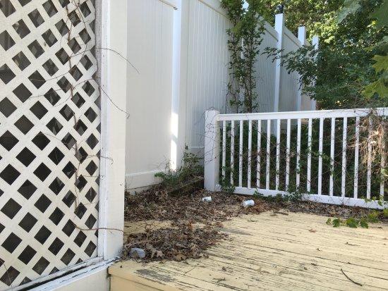 Dandridge, TN: Debris near closed hot tub