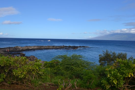 From the Kapalua Trail