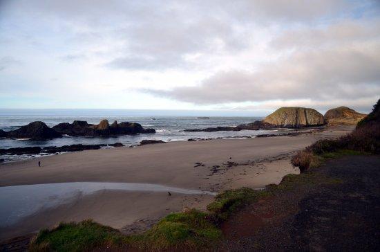 Seal Rock Photo