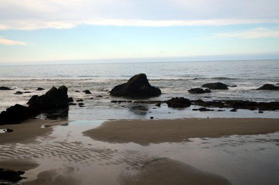 Seal Rock Foto