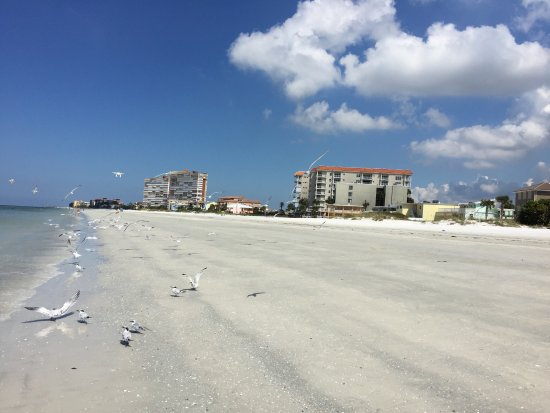 Redington Shores, FL: Wow