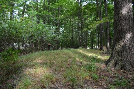 Sheboygan, WI: Burial Mound