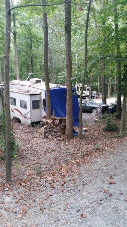 Advance, Kuzey Carolina: Tarp over back of camper. They have been there a while