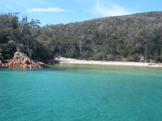 Coles Bay Bild
