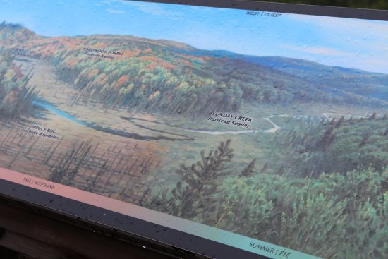 Algonquin Provincial Park, Canada: Map at Look Out point at Visitors Center