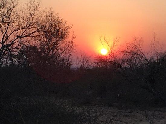 Skukuza, Afrique du Sud : photo4.jpg