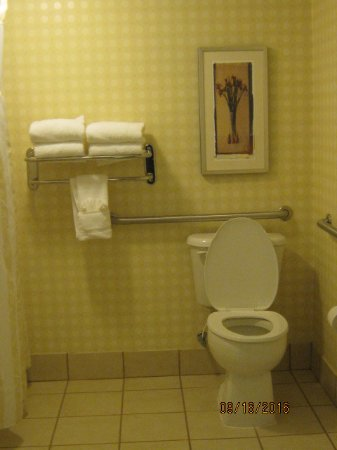 Hilton Garden Inn Greensboro: large bathroom