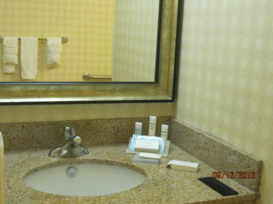 Hilton Garden Inn Greensboro: sink