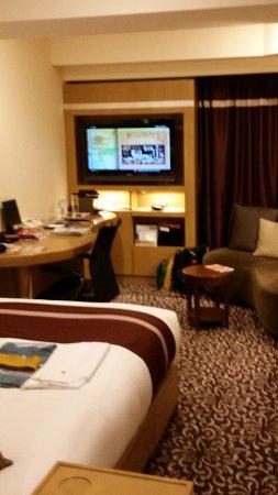 Hotel Ryumeikan Tokyo: Forus room, no outside view