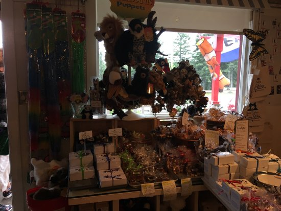 Knife River, MN: Great bear tracks!! Cute Lil candy shop, with friendly and helpful staff!! You must stop when in