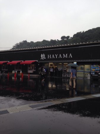 Hayama-machi, Japonia: photo1.jpg