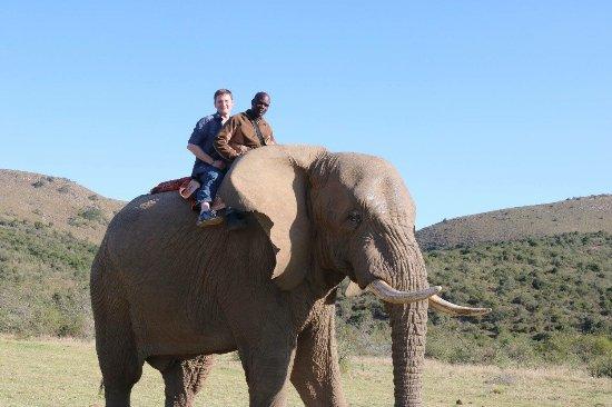 Addo Elephant National Park, Sør-Afrika: photo2.jpg