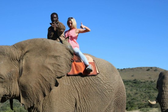 Addo Elephant National Park, África do Sul: photo3.jpg