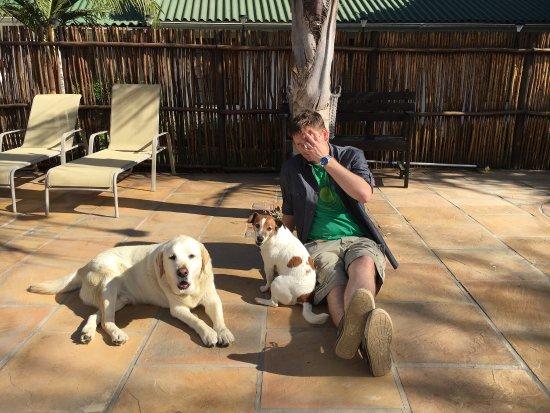 Addo, Νότια Αφρική: photo1.jpg