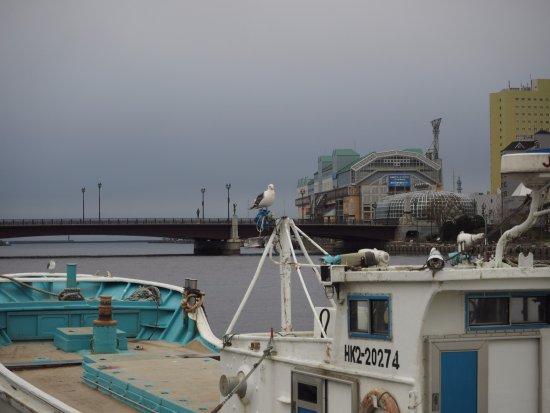 Kushiro, Giappone: 海鳥と漁船が似合う橋