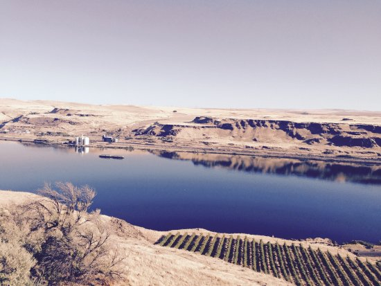 Goldendale, WA: Lovely view f the Columbia River.