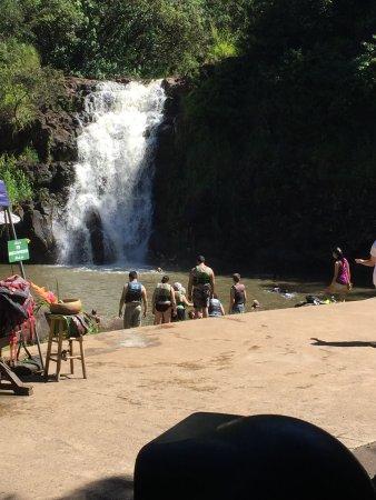 Discover Hawaii Tours: photo9.jpg