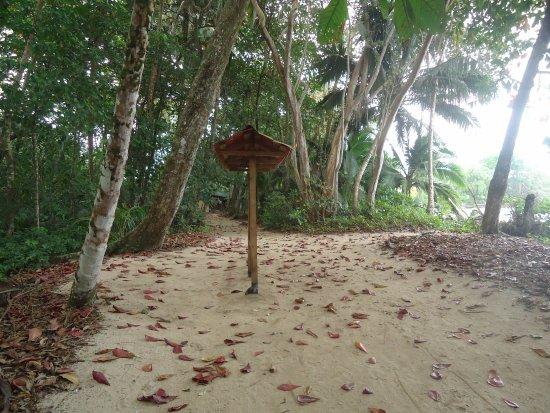 trilha da reserva de Cahuita