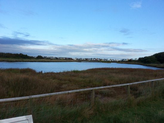 Hengistbury Head: lovely lakes with info boards on what (could) possibly be seen