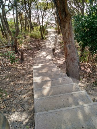 North Stradbroke Island, Australien: The stairs dwon to Frenchman's Beach