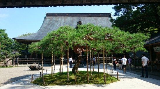 Chuson-ji Temple Photo