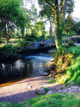 Blarney, Irlanda: Garden