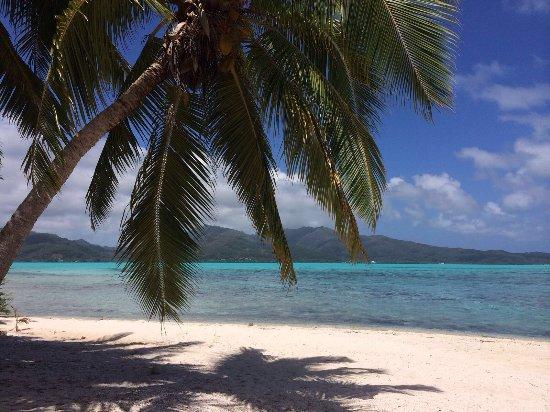 Patio, Polinezja Francuska: photo6.jpg