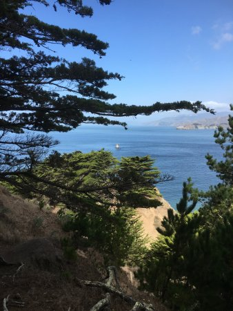 Legion of Honor: The view
