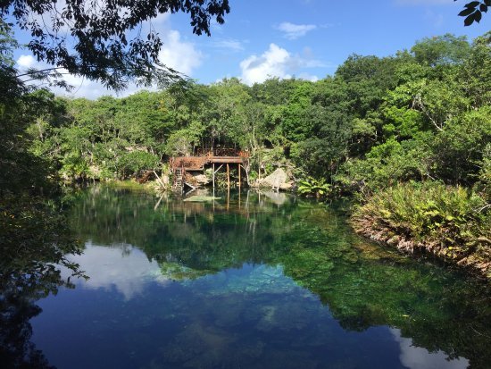 Yucatan, Mexico: calm water before we all jumped in