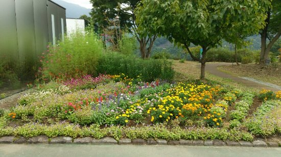 Midori, Giappone: 外の花壇。