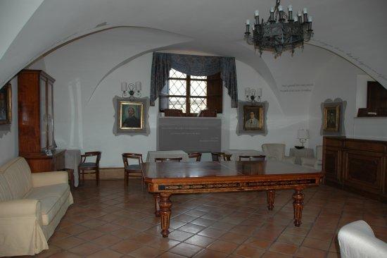 Castello Chiola Hotel: The billiard room