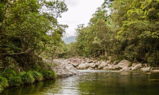 Daintree Region, Avustralya: Mossman Gorge