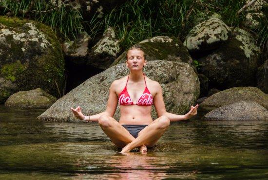 Daintree Region, Avustralya: Moment Zen
