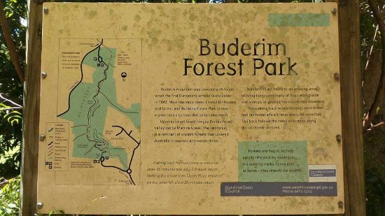 Buderim, Australië: FB_IMG_1474792144652_large.jpg
