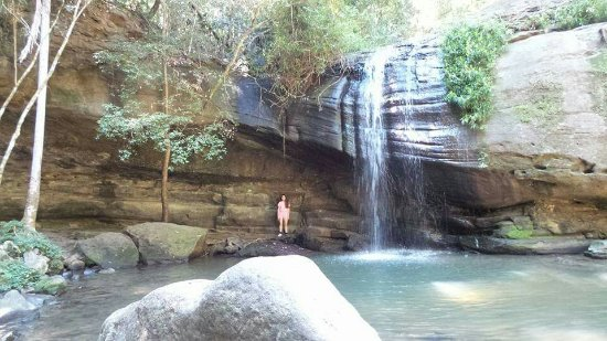 Buderim, Australië: FB_IMG_1474792181625_large.jpg