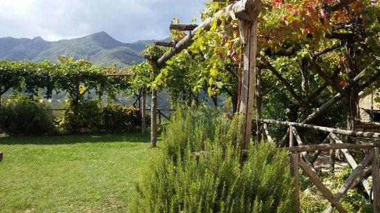 Tramonti, Italia: Osteria Reale