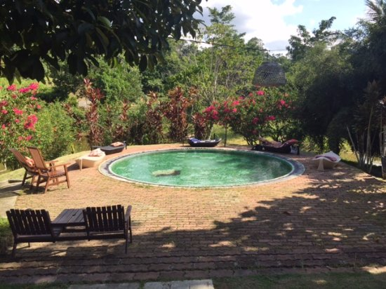 Sepilok, Malesia: Piscina relax